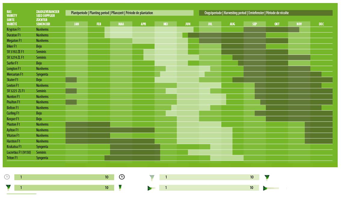 Liste de vari t s plants de poireaux beeren plantproducts - Plants de poireaux a repiquer ...